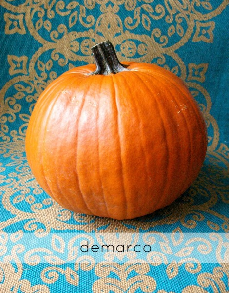 pumpkin 1_demarco