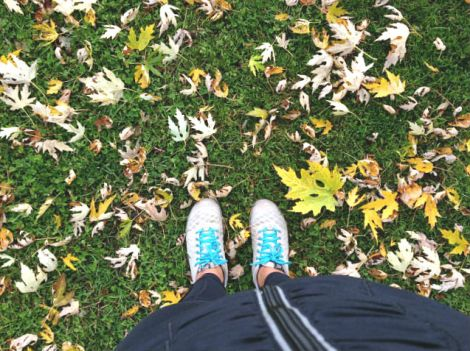 run_leaves