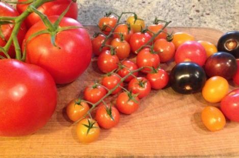 tomato_07