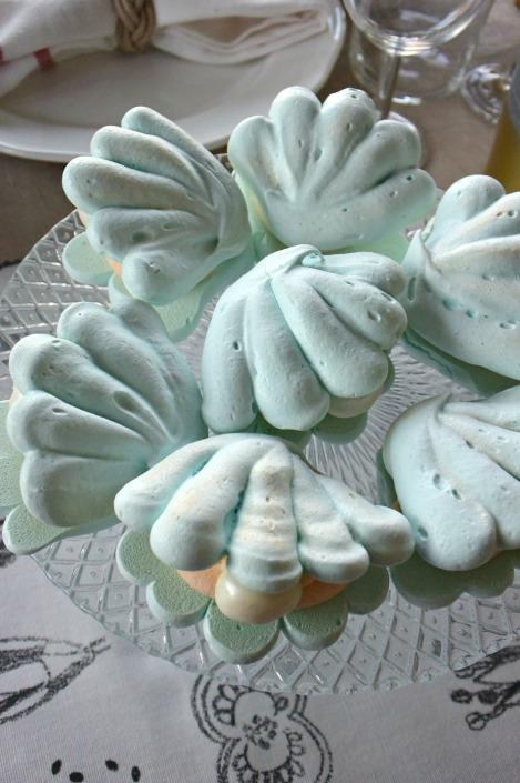 shells_09
