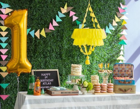First Birthday Party_Moonrise Kingdom_10